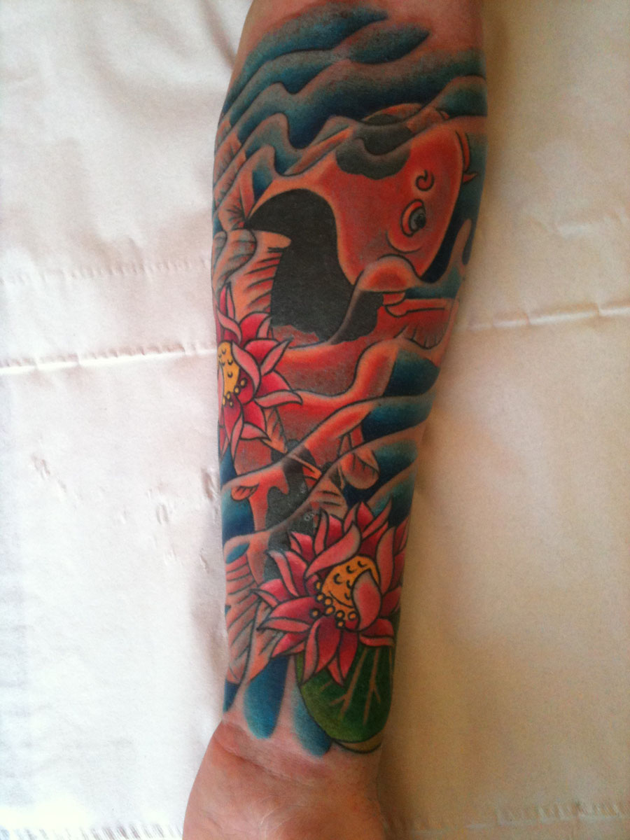 Koi and lotus flowers